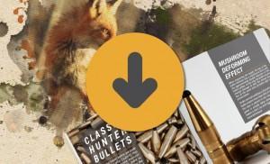 Fox Bullets_category_free downloads