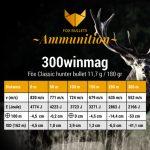 Fox Ammunition_Ballistic data_300winmag-180gr